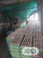 Buy Your Fresh White And Brown Eggs | Meals & Drinks for sale in Oyo State, Ibadan