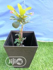 Get Your Fancy Flower Planter Fo Sale | Manufacturing Services for sale in Cross River State, Abi