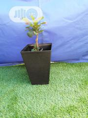 Beautiful Squared Flower Pot For Sale | Garden for sale in Delta State, Ugheli