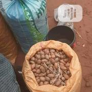 Bitter Kola | Feeds, Supplements & Seeds for sale in Lagos State, Surulere