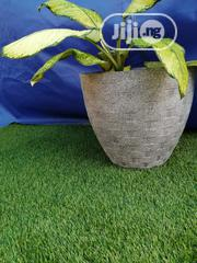 Quality Affordable Flower Pot/Planter   Garden for sale in Osun State, Egbedore