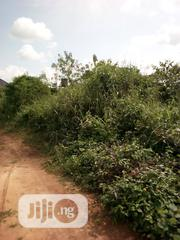 Plain Land Very Close to Main Sapele Road for Sale | Land & Plots For Sale for sale in Edo State, Benin City