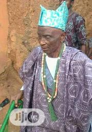 The Most Powerful Native Doctor In Yoruba Land | Health & Beauty Services for sale in Ogun State, Ijebu Ode
