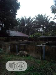 Animal Farm For Sale | Land & Plots For Sale for sale in Akwa Ibom State, Uyo
