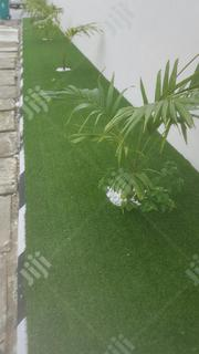 Carpet Gras Of High Quality Available   Garden for sale in Lagos State, Victoria Island