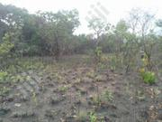 Acre Of Lands For Sale | Land & Plots For Sale for sale in Ogun State, Ewekoro