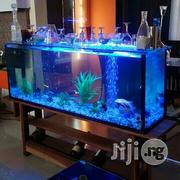 Aquarium In Lagos | Fish for sale in Lagos State, Ikeja