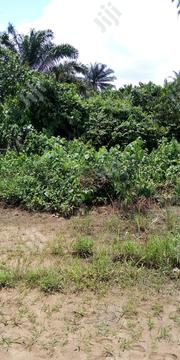 One Plot, Half Plot Of Land In Elimgbu, Off Tank Junction | Land & Plots For Sale for sale in Rivers State, Obio-Akpor