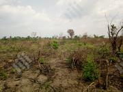 24 Acres Of Farm Land Close To Adetokun Ologuneru Ibadan. | Land & Plots For Sale for sale in Oyo State, Ido