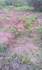 C Of O In Progress | Land & Plots For Sale for sale in Ogun State, Ifo
