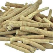 Neem Root Organic Neem Root   Feeds, Supplements & Seeds for sale in Lagos State, Victoria Island