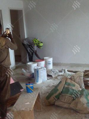 Superb Wall Screeding And Painting
