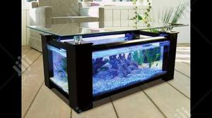 Aquariums For Your Homes Gardens And Offices