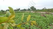 Land By Roadside For Sale | Land & Plots For Sale for sale in Nasarawa State, Karu-Nasarawa