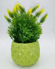 Mini Flower Pot | Kitchen & Dining for sale in Ondo State, Ondo