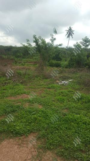 100 Plots Of Farm Land At Ijare For Sale