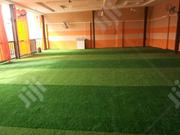 Dealers On Artificial Grass Nationwide | Garden for sale in Bauchi State, Damban