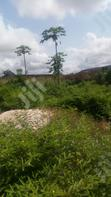 Very Nice and Genuine Plot of Land Measuring 50X100FT for Sale | Land & Plots For Sale for sale in Benin City, Edo State, Nigeria