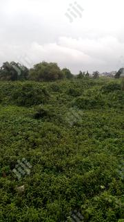 500 Acres Of Land | Land & Plots For Sale for sale in Ogun State, Ewekoro