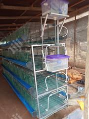 Broilers Battery Cages | Livestock & Poultry for sale in Rivers State, Ikwerre