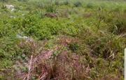 Urgent Land Sale   Land & Plots For Sale for sale in Abuja (FCT) State, Pyakasa