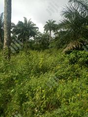 Land For Sales | Land & Plots For Sale for sale in Ondo State, Akoko South West