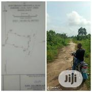 Land for Immediate Sale in Port Harcourt | Land & Plots For Sale for sale in Rivers State, Port-Harcourt