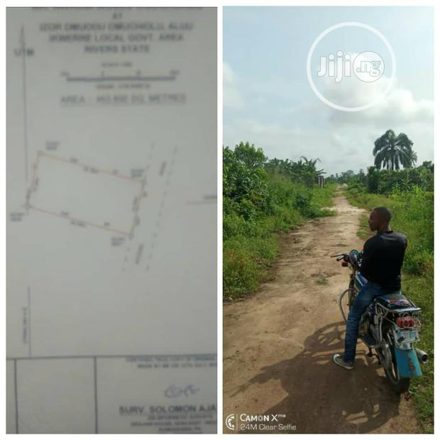 Archive: Land for Immediate Sale in Port Harcourt