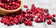 Cranberry Juice Powder   Vitamins & Supplements for sale in Rivers State, Port-Harcourt