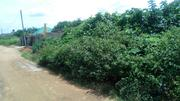 One Plot Of Land @ Igwuruta, Eneka Road, Port Harout FOR SALE | Land & Plots For Sale for sale in Rivers State, Ikwerre