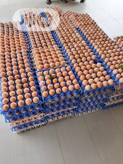 Poultry Eggs | Meals & Drinks for sale in Abuja (FCT) State, Central Business District