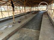 2 Acres Of Land With Piggery Pen And Poultry Pen | Land & Plots For Sale for sale in Oyo State, Oyo