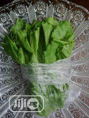 Lettuce /Kg | Meals & Drinks for sale in Lagos State, Ikeja