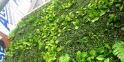 Synthetic Boxwood For Gardens | Landscaping & Gardening Services for sale in Lagos State, Ikeja
