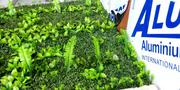 Synthetic Boxwood Wreath   Landscaping & Gardening Services for sale in Lagos State, Ikeja