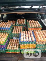 Buy Eggs At Affordable Prices | Meals & Drinks for sale in Ekiti State, Ado Ekiti