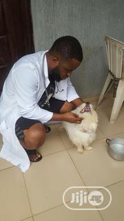 Experience And Swift Vet Doctor | Pet Services for sale in Lagos State, Lagos Mainland