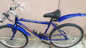 Adult Bicycle (Size 26 )