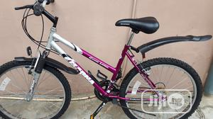 Adult Bicycle (Size 24 Magna Bike)