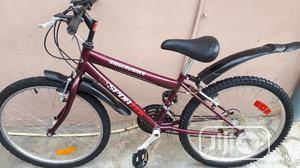 Adult Bicycle Size 24