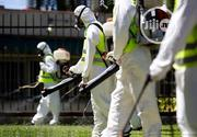 Lekki Fumigation/Pest Control | Cleaning Services for sale in Lagos State, Lekki Phase 1