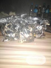Processed Snail | Other Animals for sale in Lagos State, Ikorodu
