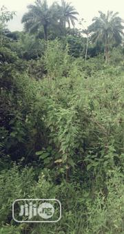 Affordable Plot Of Land | Land & Plots For Sale for sale in Ondo State, Akoko South West