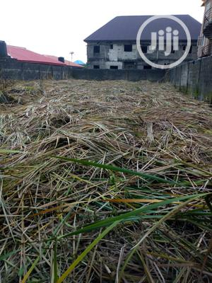 Allocated Land For Sale in Epe