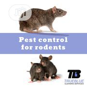 Fumigation Of Rats/Bed Bugs | Cleaning Services for sale in Lagos State, Lekki Phase 1