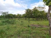 Land for Sale in Life Camp | Land & Plots For Sale for sale in Abuja (FCT) State, Gwarinpa