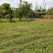 20 Hectares of Land at Karsana South for Sale   Land & Plots For Sale for sale in Abuja (FCT) State, Gwarinpa