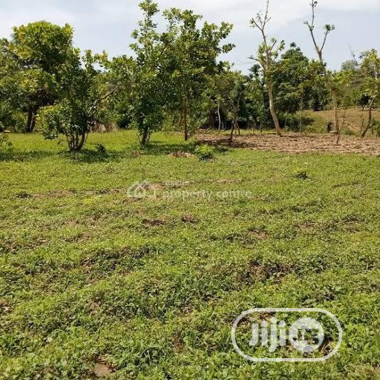 Archive: 20 Hectares of Land at Karsana South for Sale