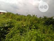 LAND FOR SALE: 100x100 Off Airport Road, Benin City. | Land & Plots For Sale for sale in Edo State, Ikpoba-Okha