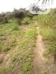 50 Acres Of Land At Imini Village Moniya Ibadan | Land & Plots For Sale for sale in Oyo State, Akinyele